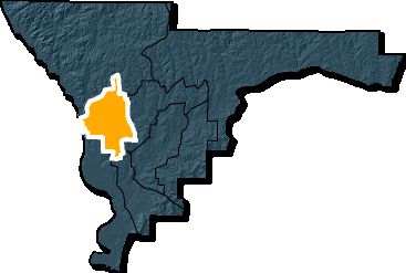 Council District 8